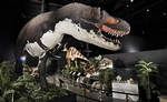 Branson Dinosaur Museum - Branson, Missouri 2020 / 2021 Information, attraction tickets, schedule, and map