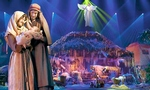 Miracle of Christmas Show - Branson, Missouri 2018 / 2019 Information, discount show tickets, schedule, and map
