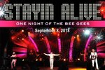 Stayin' Alive - One Night Of The Bee Gees  - Branson, Missouri 2018 / 2019 Information, show tickets, schedule, and map