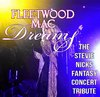 Fleetwood Mac Dreams - The Stevie Nicks Concert Tribute - Branson, Missouri 2019 / 2020 information, schedule, map, and discount tickets!