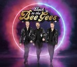 Back to the BeeGees - Branson, Missouri 2021 / 2022 Information, discount show tickets, schedule, and map